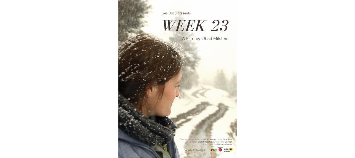 Week 23 (2)
