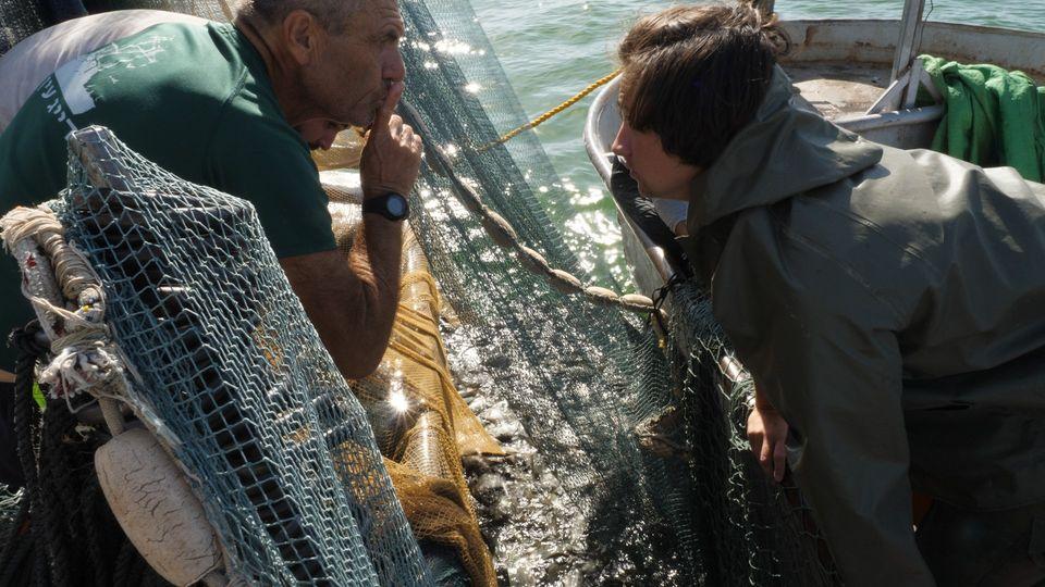 הדייג האחרון בים כנרת