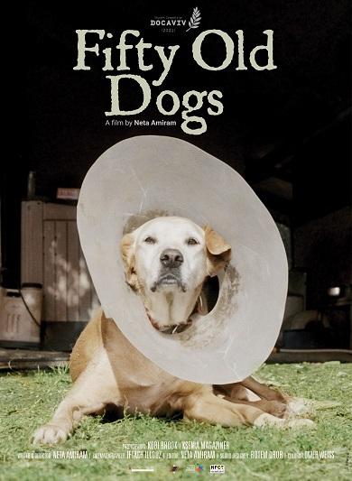 חמישים כלבים זקנים - פוסטר לעמוד הבית